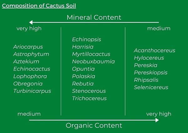 what soil to use for cactus